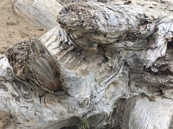 Elk - McClure - Woodgrain